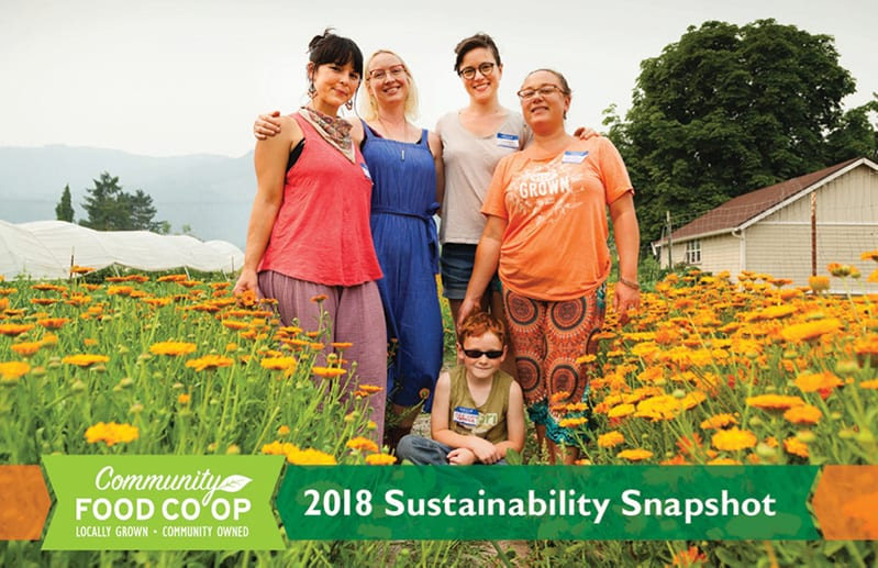 2018 sustainability snapshot