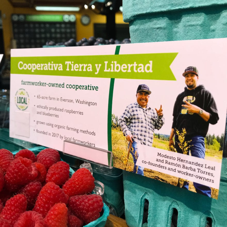 informational sign about cooperativa tierra y libertad local farmworker cooperative and their local organic blueberries and raspberries